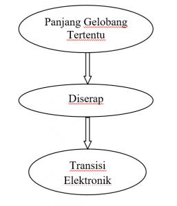 Proses-Absorbsi-Cahaya-Pada-Spektrofotometer