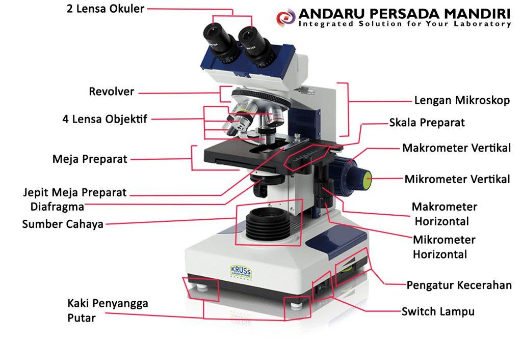 bagian-bagian-pada-mikroskop