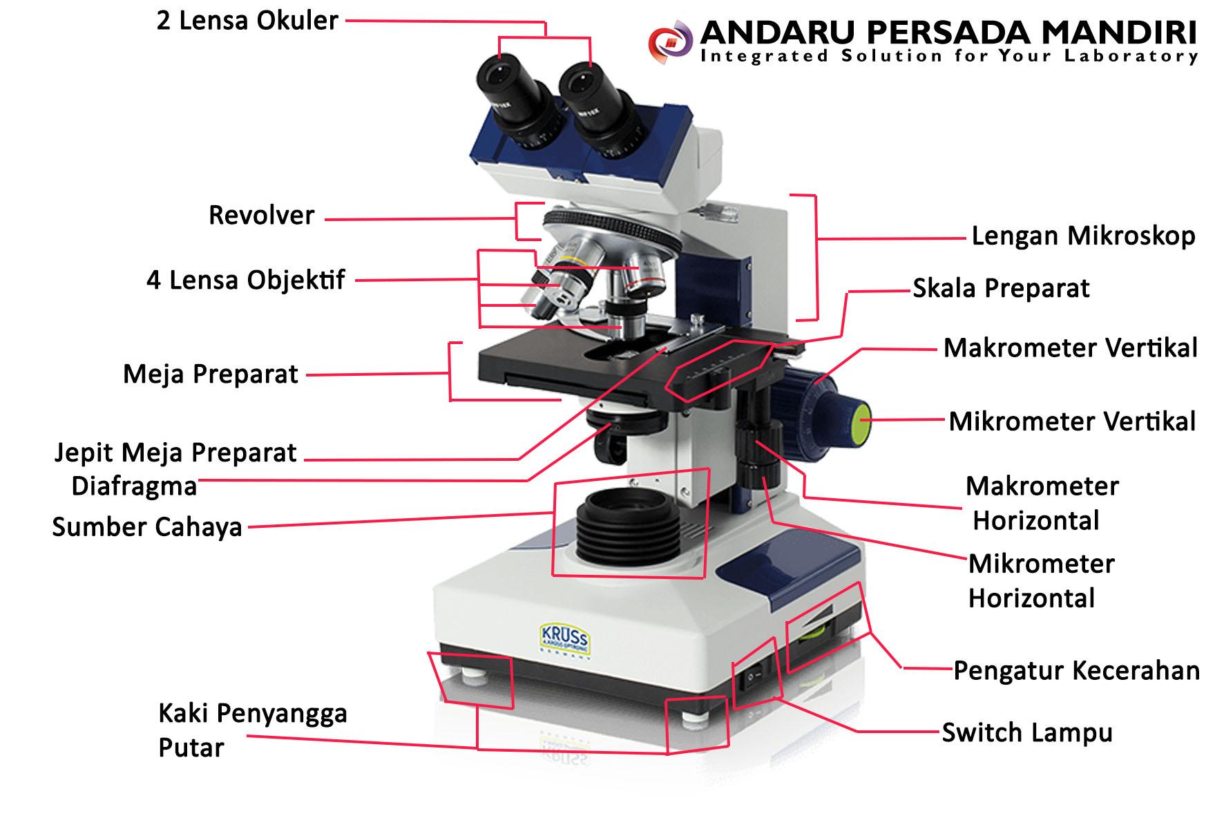 Mikroskop Pengertian Sejarah Fungsi Bagian Jenis Mikroskop