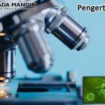 Pengertian Mikroskop Secara Umum dan Beberapa Referensi Website