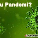 Apa itu Pandemi ?