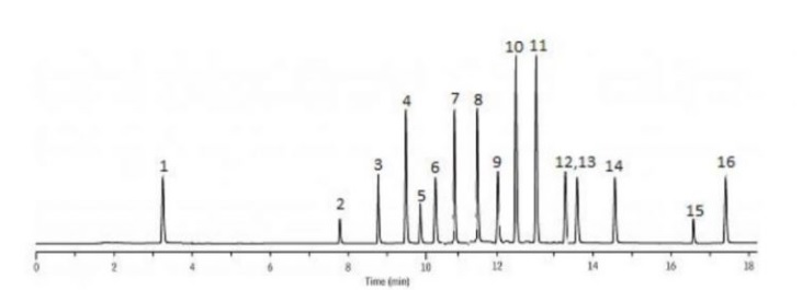 gas-chromatography-grafik-4