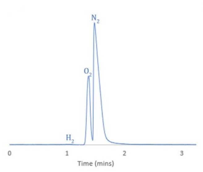 gas-chromatography-grafik-6