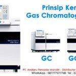 Prinsip Kerja Gas Chromatography