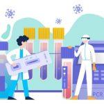 Apa Itu Kit PCR