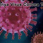 Munculnya Virus Corona Terbaru