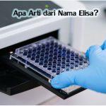 Apa Arti dari Nama ELISA?