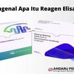 Reagen Elisa – Mengenal Apa Itu Reagen Elisa?