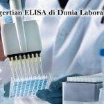 Pengertian Elisa di Dunia Laboratorium